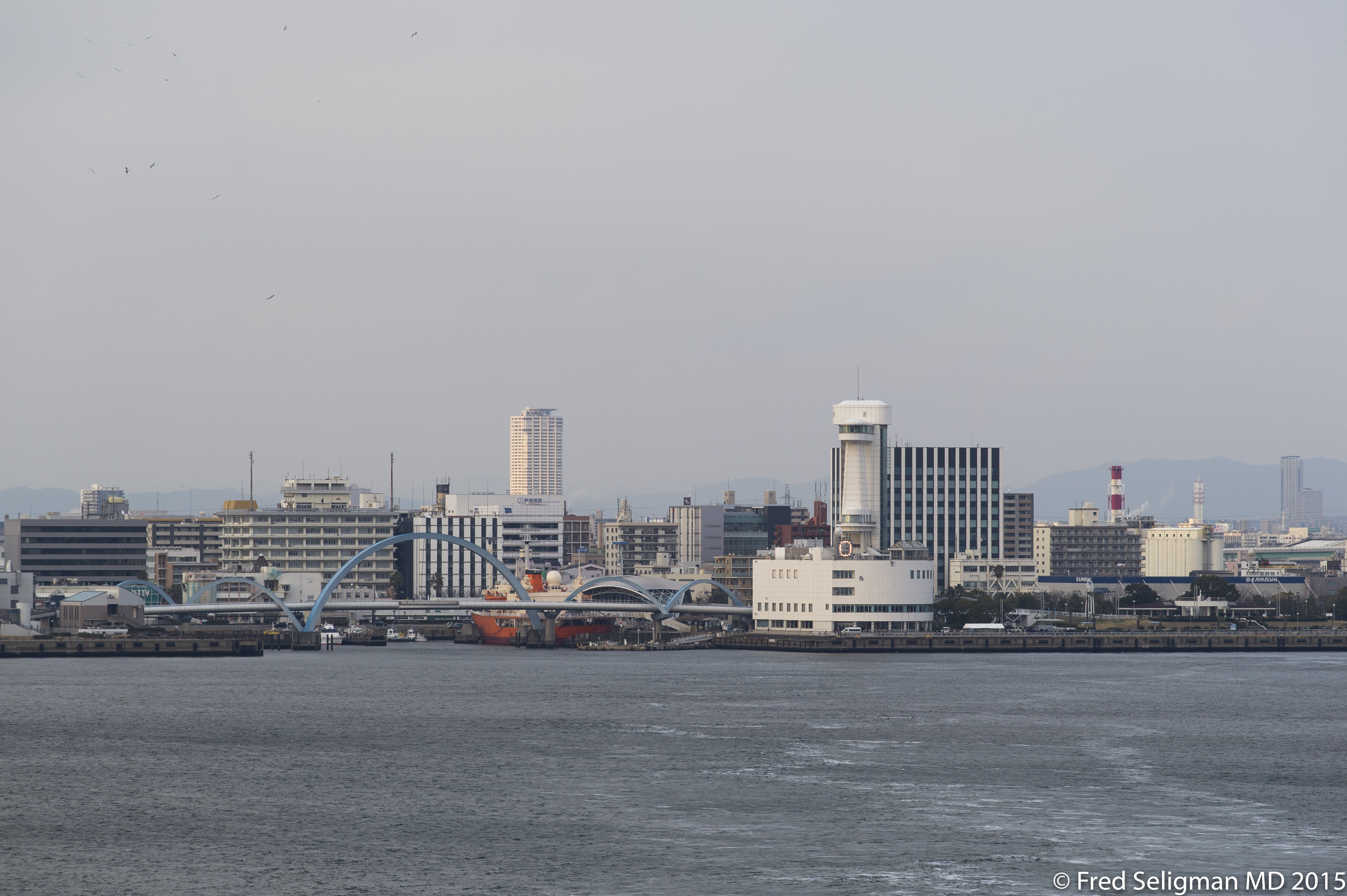 20150312_090124 D3S.jpg - Nagoya from harbor