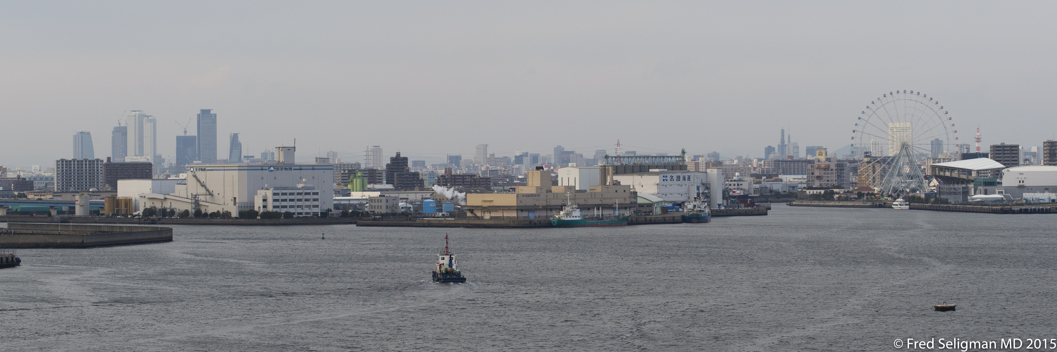 20150312_090159 D3S.jpg - Nagoya from harbor